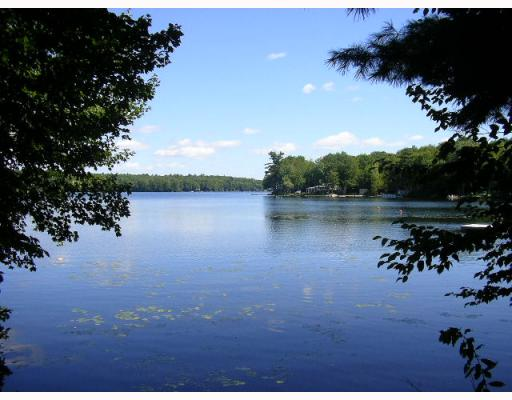 Image gallery maine lakes for Pond fish for sale near me