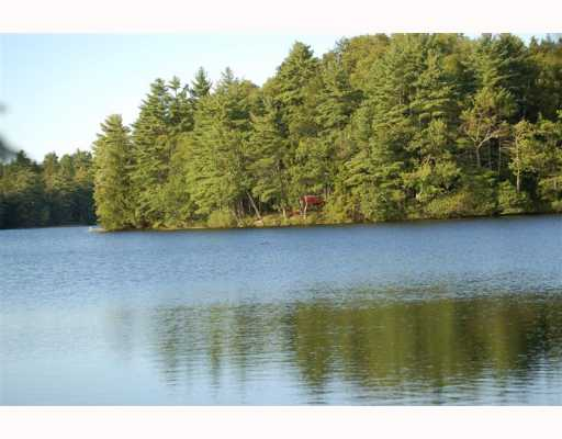 Mr Lake Frontstevens Pond Liberty Maine Lakefront