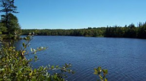Branch Lake, Ellsworth, Maine: Large, Quiet & Idyllic for Lakefront Property