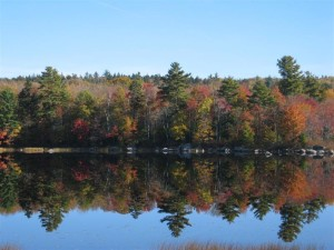 Lower Patten Pond, Ellsworth & Surry, Maine: A Classic Maine Lakefront Location