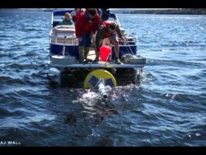 Great Pond Monitoring Buoy Records Data About Water Quality in Belgrade, Maine