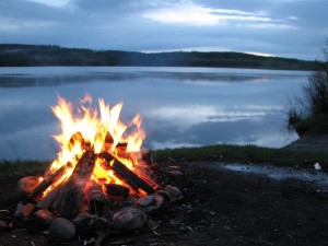 Lakefront Property Owners Should Keep Maine Beautiful – Leave Your Firewood at Home