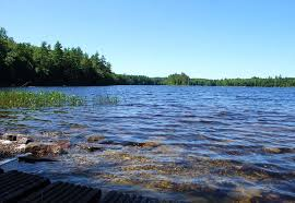 Maine Lakefront Property Owners Learn About Submersed Invasive Aquatic Plants