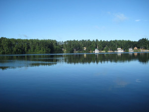 Lyme Disease Awareness for Maine Lakefront Property Owners